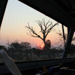 Sonnenuntergang durchs Autofenster